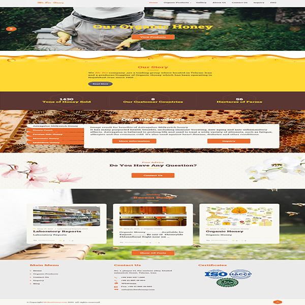 طراحی سایت شرکتی مستر بی هانی